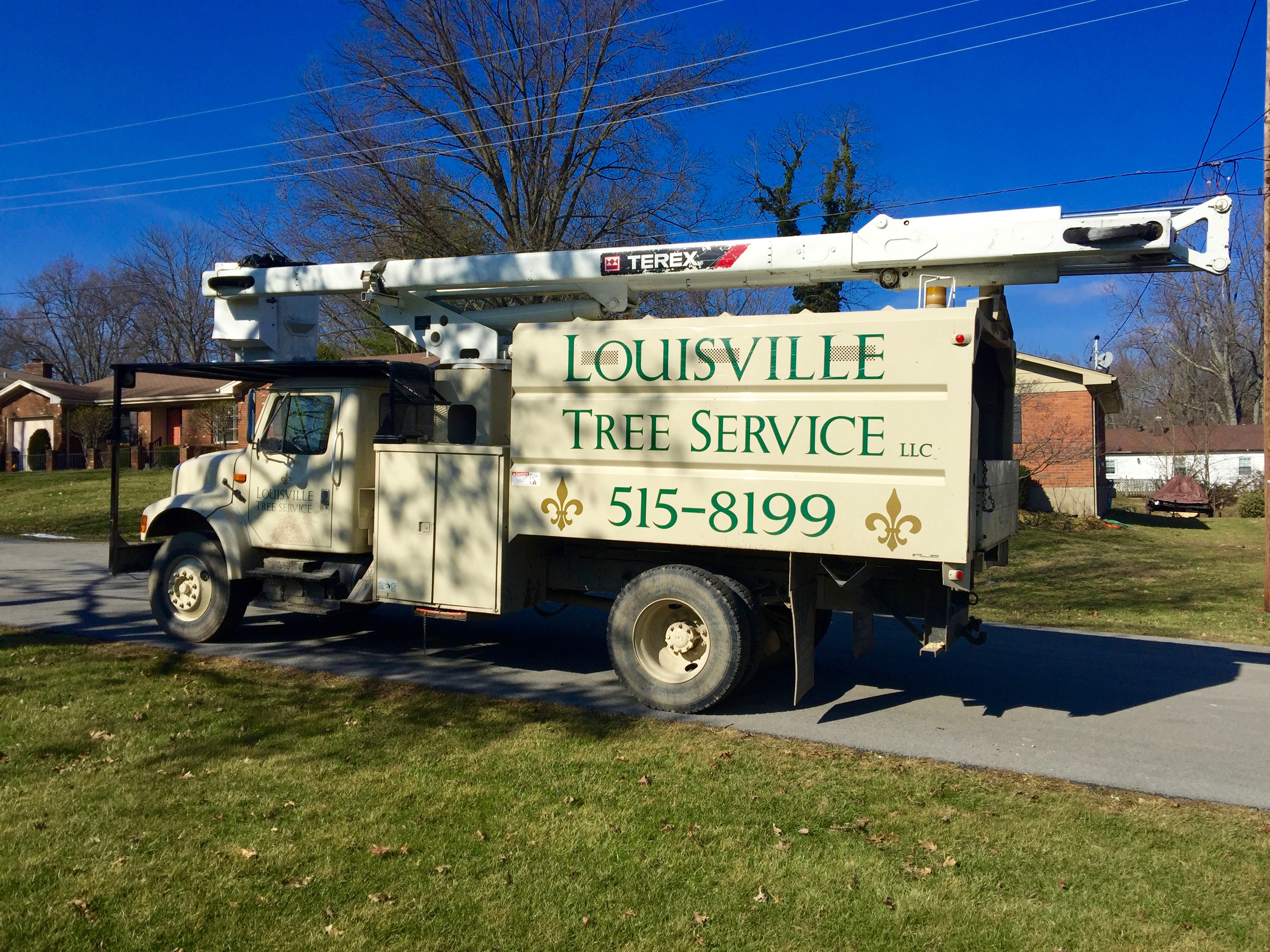Louisville Shrub Removal